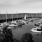 1091 Newhaven Harbour by DavidsArt