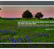 Genesis 1:11 by aprilann