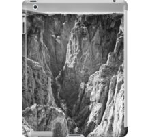 Black Canyon of the Gunnison National Park iPad Case/Skin