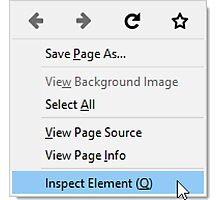 Inspect Element Photographic Print