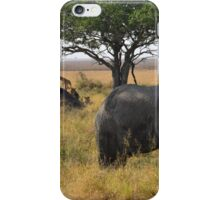 Lions watch on iPhone Case/Skin