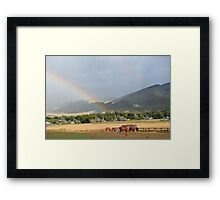 Rainbows & Draft horses Framed Print