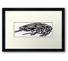 Cockroach (Side View) Framed Print