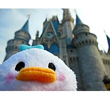Dolan Does Didney Photographic Print