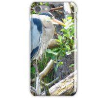 Beautiful Great Blue Heron iPhone Case/Skin