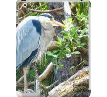 Beautiful Great Blue Heron iPad Case/Skin