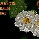 You light my darkness by Carolyn Clark