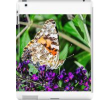 Morning Sun,  Butterfly and Flower iPad Case/Skin