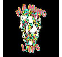The Flaming Lips Photographic Print