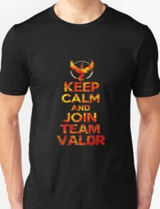 Team Valor T-Shirt  Unisex T-Shirt
