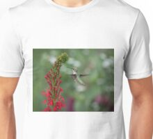 Ruby Throated Hummingbird 2016-4 Unisex T-Shirt