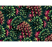 Cactus Floral - Green/Black/Pink Photographic Print