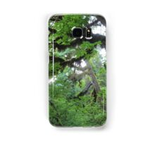 Beautiful trees in Olympic National Park Samsung Galaxy Case/Skin