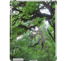 Beautiful trees in Olympic National Park iPad Case/Skin