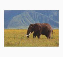 African Bush Elephant (Loxodonta africana) Baby Tee