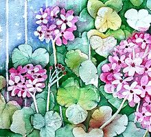 Pink geraniums by Klara Ward