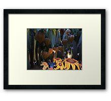 Sunflower seat Framed Print