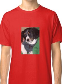 All You Need Is A Orb Hunting Dog Classic T-Shirt