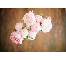 Peonies Photographic Print