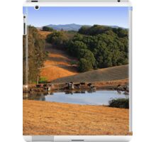 Cows Drink From a Pond in the Petaluma Hills of California iPad Case/Skin
