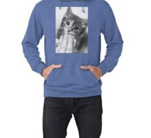 Kitten Kisses Lightweight Hoodie