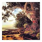 Dunwich - North Stradbroke Island Australia by Rob Price