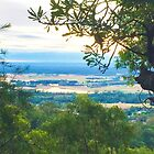Penrith Lakes View, NSW, Australia by GeorgeOne