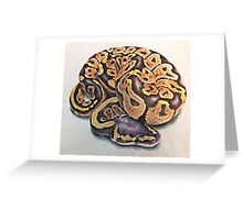 Ball Python Greeting Card