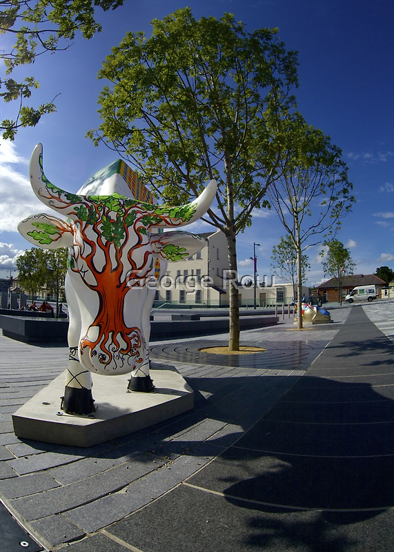 Cows and Trees, Ebrington Square, Derry by George Row