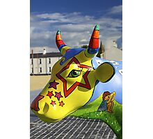 Play Trail - Asperations Cow, Ebrington Photographic Print