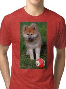 Akita Dog With Ball   Tri-blend T-Shirt
