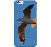 Just a Gull iPhone Case/Skin