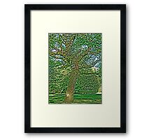Walt Disney Tree Framed Print