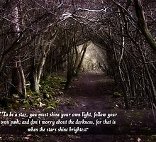 Follow Your Own Path by Vicki Field