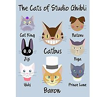 THE CATS OF STUDIO GHIBLI Photographic Print