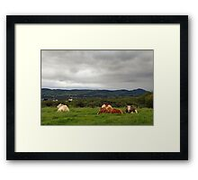 It's a tough life... Framed Print