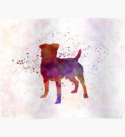 German Hunting Terrier in watercolor Poster