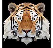 Crystalline Tiger Photographic Print