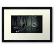 Mysterious Reflection  Framed Print