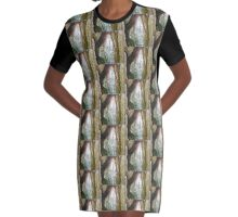 Merlinstone Graphic T-Shirt Dress