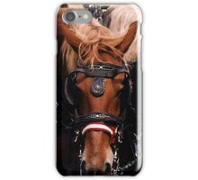 Draft Horses In Harness   iPhone Case/Skin