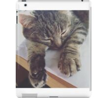 Sleepy Kitty iPad Case/Skin