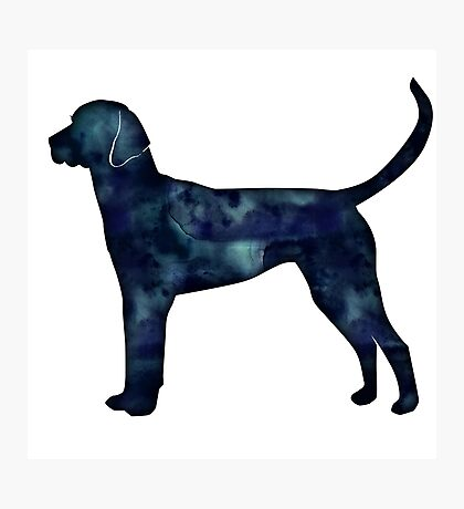 English Foxhound Black Watercolor Silhouette Photographic Print