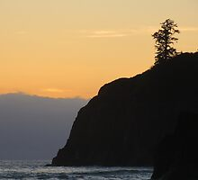 Ruby Beach with Yellow Sky by jkmarshall