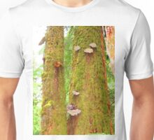 Moss Covered Trees Unisex T-Shirt
