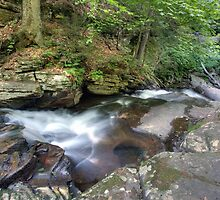 Conestoga Falls From The Top by Gene Walls