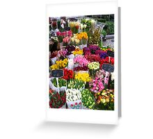 Spring Flowers 3 Greeting Card