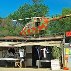 Outback Souvenir Shop :) by Penny Smith