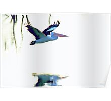Pelican on the Move Poster
