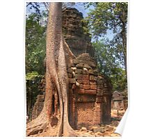 Tree entangled in ancient ruins at Ta Prohm Temple, Cambodia Poster